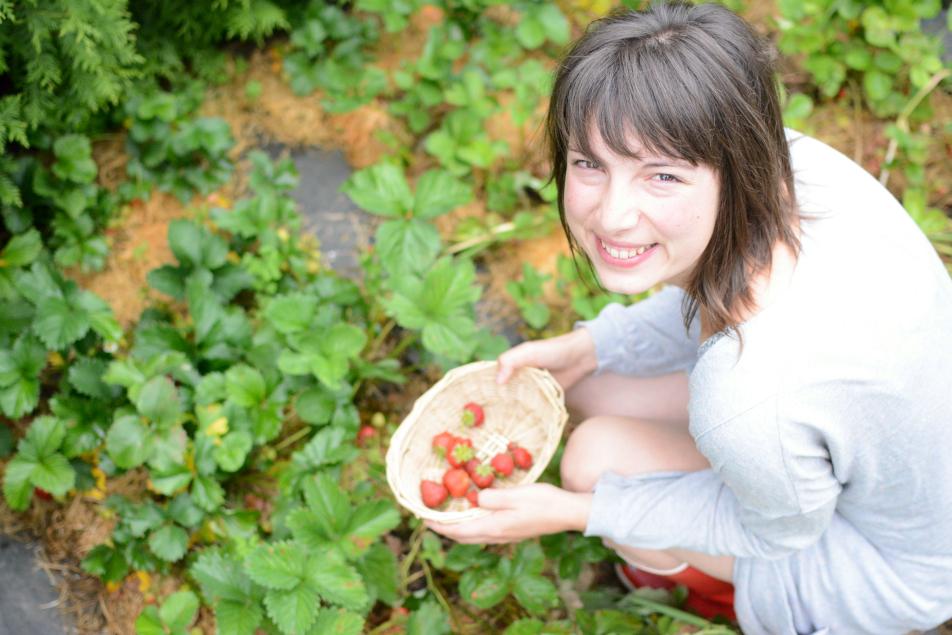 Beeren Tartelettes ganz in rot