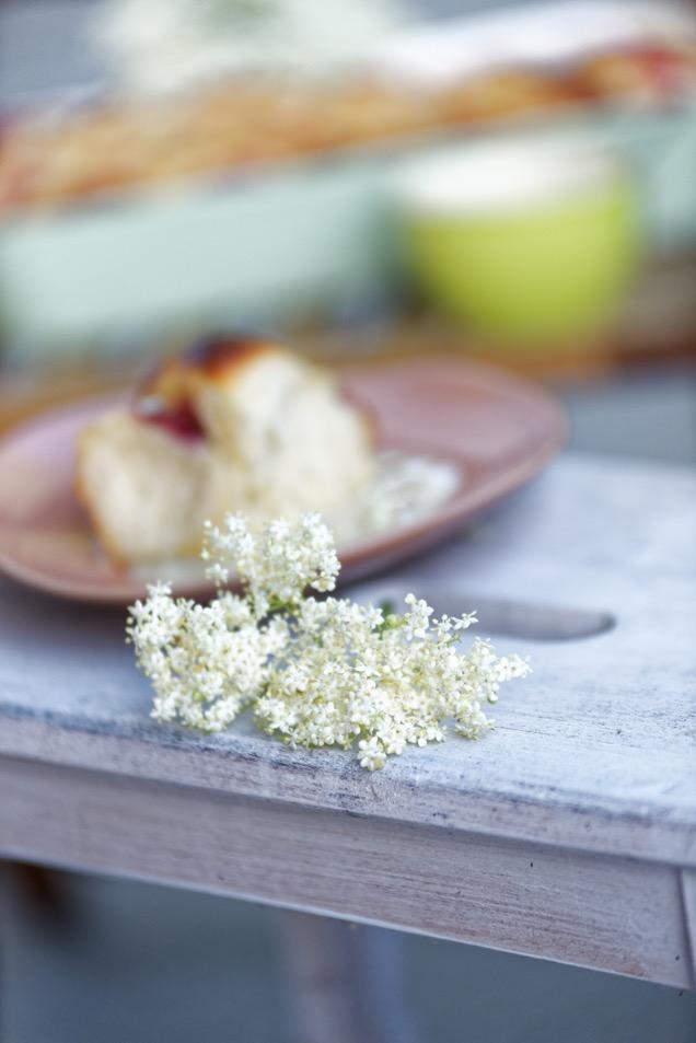 Holunderblütenmilch in unseren Hollerschnecken